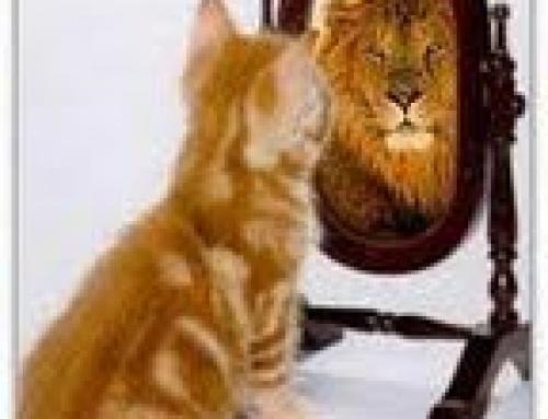 L'esperienza di sé nel mondo del Rito Scenico